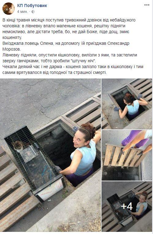 01_06_koshenya