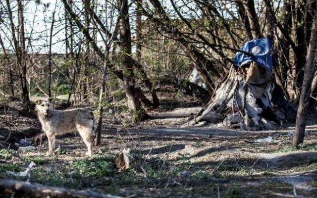 Киевский фотограф показал Заводской район Запорожья с необычного ракурса (ФОТО) Фото № 16
