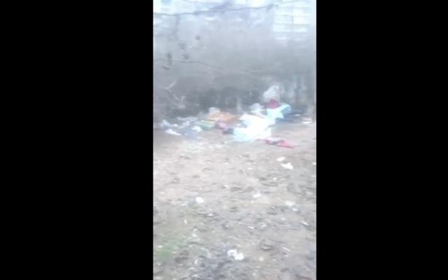 Запорожцы жалуются на мусор и грязь на улице (ВИДЕО) Фото № 0