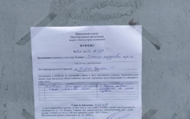 Гараж демонтировали — автомобиль оставили: в Мелитополе убрали незаконный гараж (ФОТО) Фото № 5