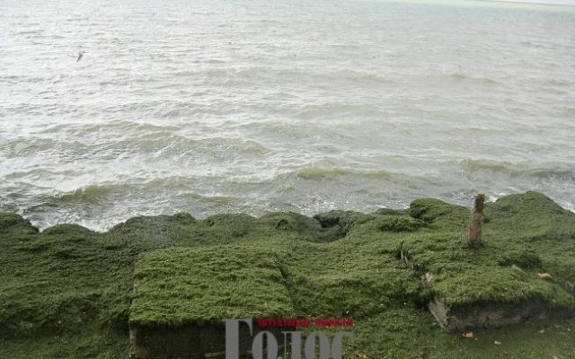 Море снова