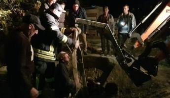 В Запорожской области спасали из ямы корову (ФОТО) Фото № 1