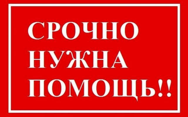 В Запорожской области нужна помощь двум девочкам 12-ти лет Фото № 0