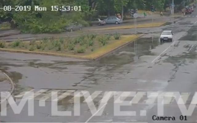В Запорожской области дерево рухнуло сразу на три авто, которые двигались по дороге (ВИДЕО) Фото № 0