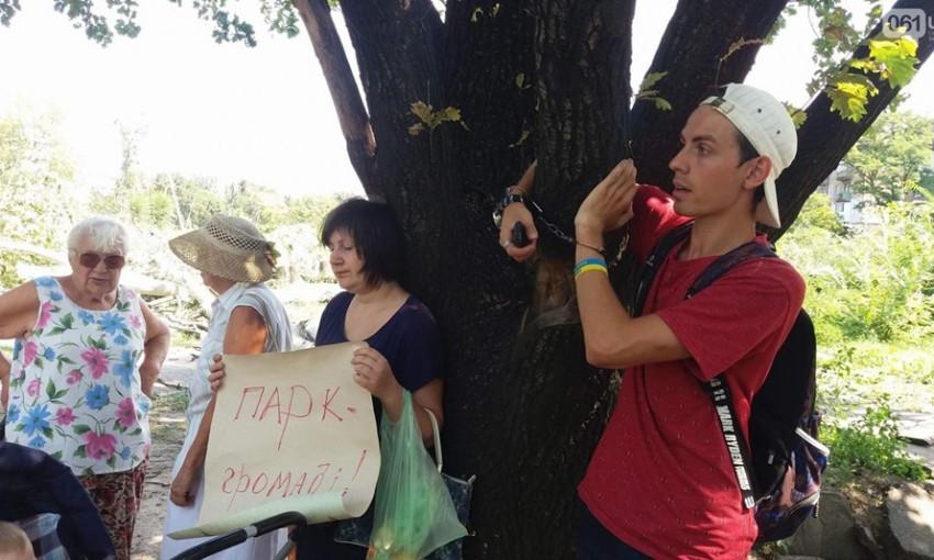 Запорожцы бросились защищать оставшиеся в парке Яланского деревья (ФОТО)