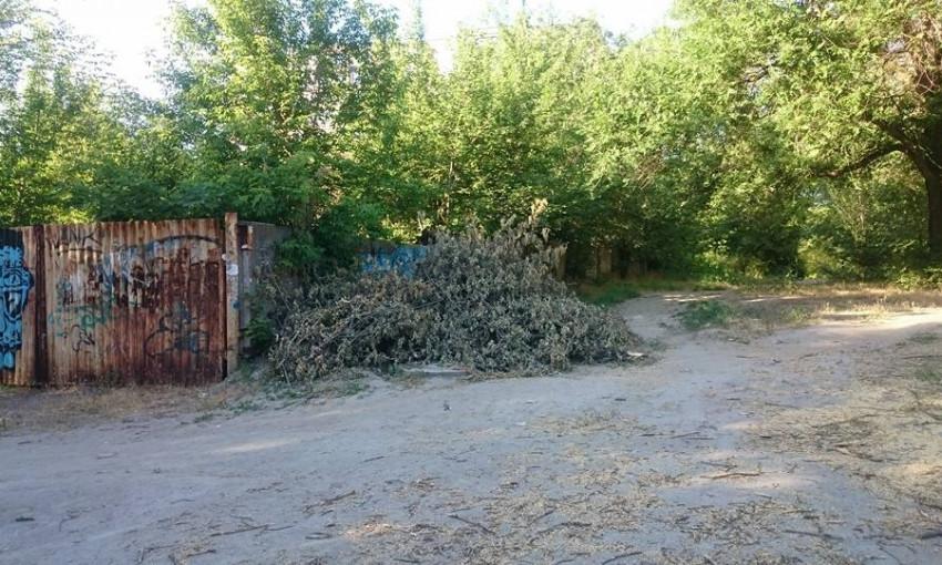 В сети запорожцы раскритиковали работу коммунальщиков (ФОТО)