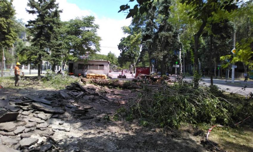 На  проспекте Маяковского массово рубят деревья (ФОТО, ВИДЕО)