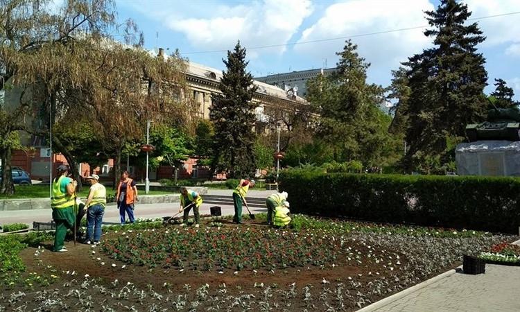 """Фотофакт: В центре Запорожья появилась сказочная """"поляна"""""""
